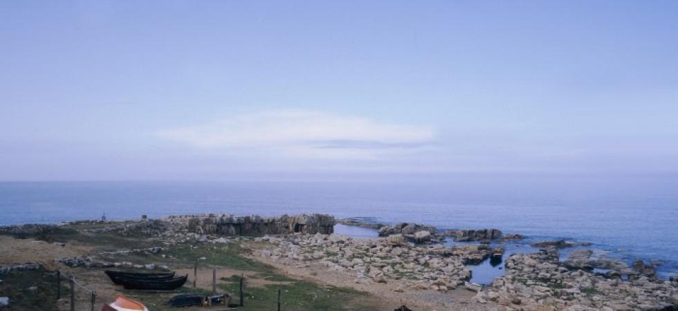 Ny HaV-rapport om miljögifter och fisk i Hanöbukten