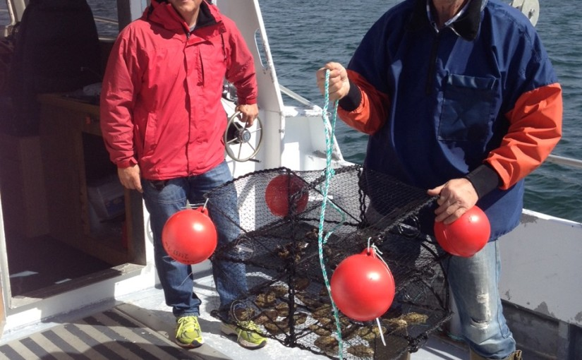 Unikt projekt undersöker fritidsbåtars effekt på havsmiljön