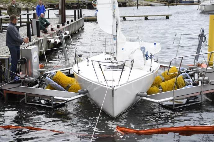 Båtborsttvätt i Limhamns hamn