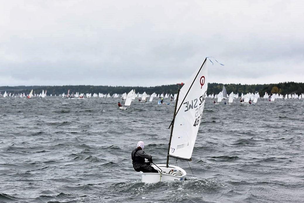 Ung segrare i vindsurfing
