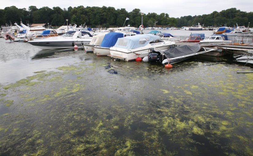 Dubblerade arrenden för Stockholms båtklubbar
