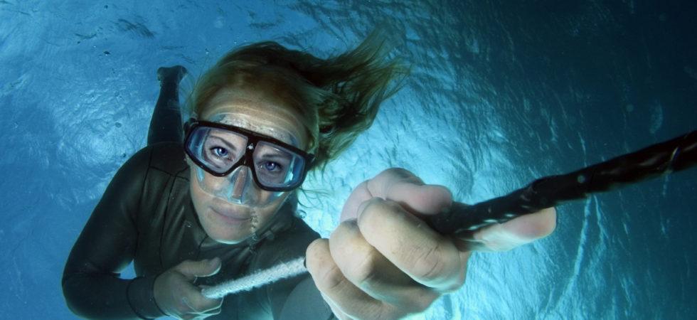 Ambassadörer hjälper WWF uppmärksamma haven