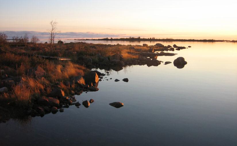 Länder dåliga på att skydda Östersjön enligt WWF