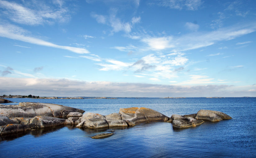 Magnus Carlson, Underbara Clara och WWF ska väcka liv i Östersjön i sommar