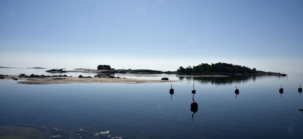 Nedskräpning irriterar oss mest på sjön