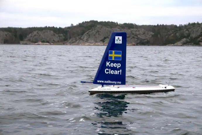 Seglande drönare kartlägger Kattegatts fiskbestånd
