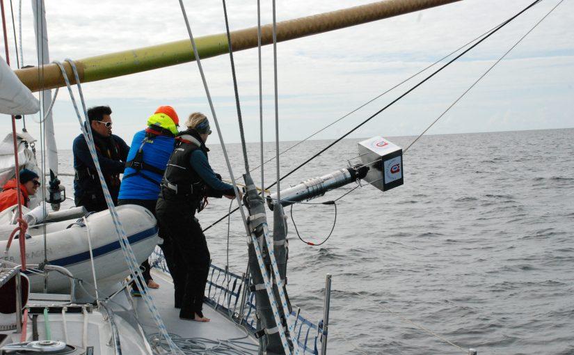 Plast i haven suger upp mindre miljögifter än forskare befarat