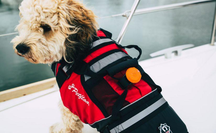 Trådlös alarmsystem för alla ombord