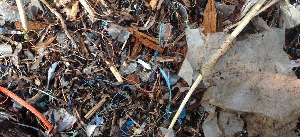 Mikroplast i havet – ohållbar konsumtion och produktion