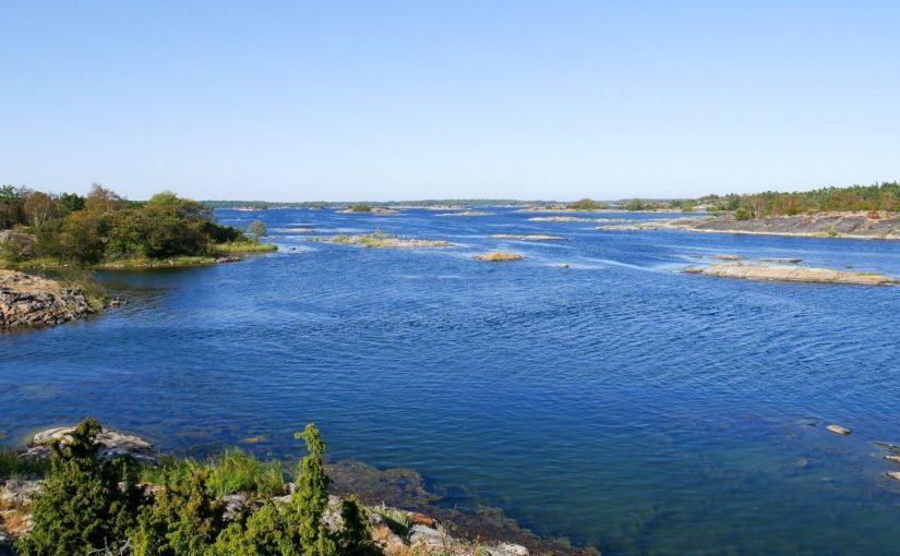 WWF satsar på ett friskare Östersjön med hjälp av Postkodlotteriet