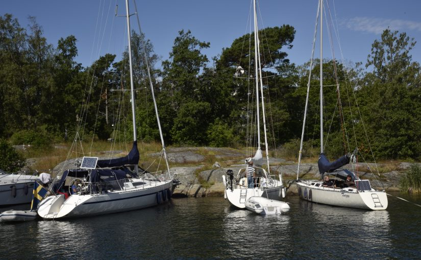 Ny undersökning – Båtbranschen står stark i sommar
